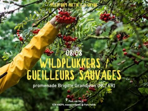 Cueilleurs sauvages - Brigitte Grandjean (platform meeting) : 08.08